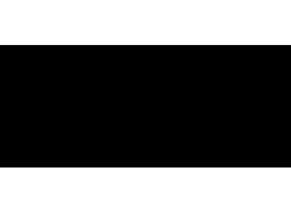 Horizon Logotype Recadrer